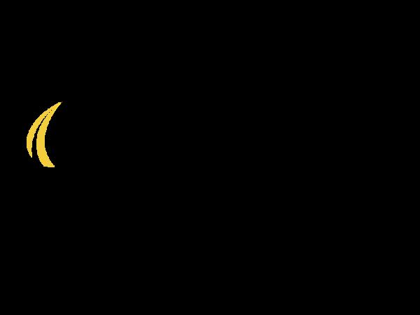 Bemidji oil and propane logo